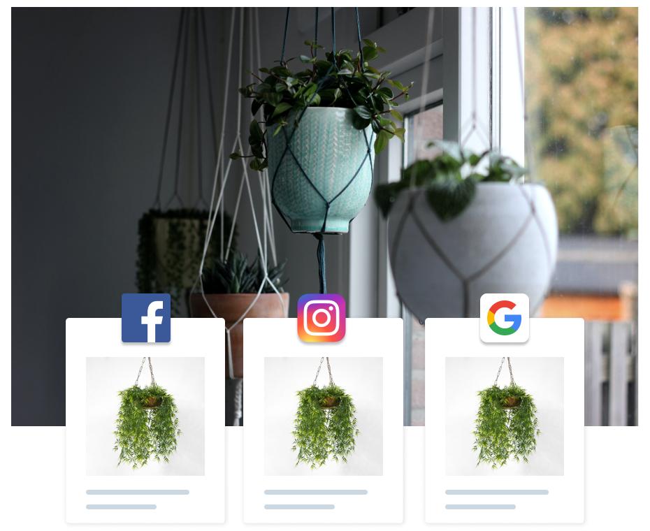 Raive Illustration - Ads Facebook Google Instagram
